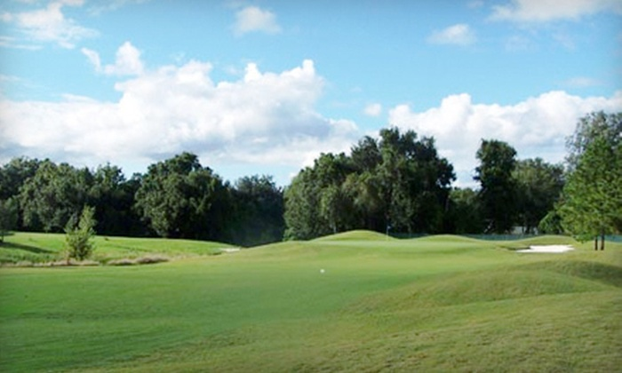 Plantation Palms Golf Club - Land O'Lakes: 18-Hole Round of Golf for Two or Four with a Cart at Plantation Palms Golf Club in Land O' Lakes (Up to 62% Off)