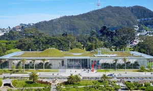 Adult, Child, Or Youth General Admission At California Academy Of Sciences