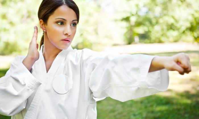 Shotokan Karate Studio of Self Defense - Queens Village: Ten or Twenty Zumba Classes at Shotokan Karate Studio of Self Defense (Up to 67% Off)