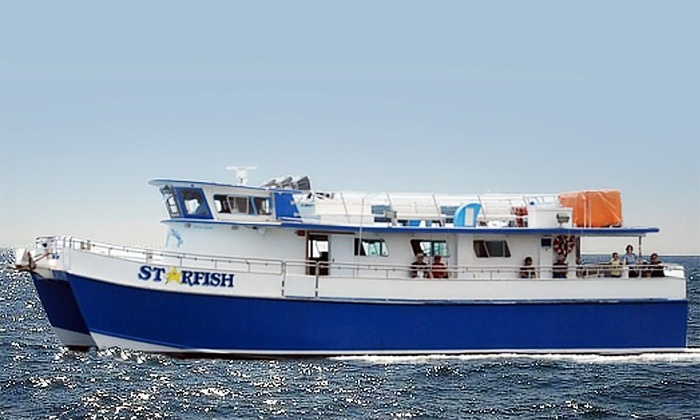Starfish Fishing & Cruising LLC - Sea Isle City: Fishing Trip for 1, 2, or 4 or Dolphin Watching for 2 or 4 from Starfish Fishing & Cruising LLC (Up to 45% Off)