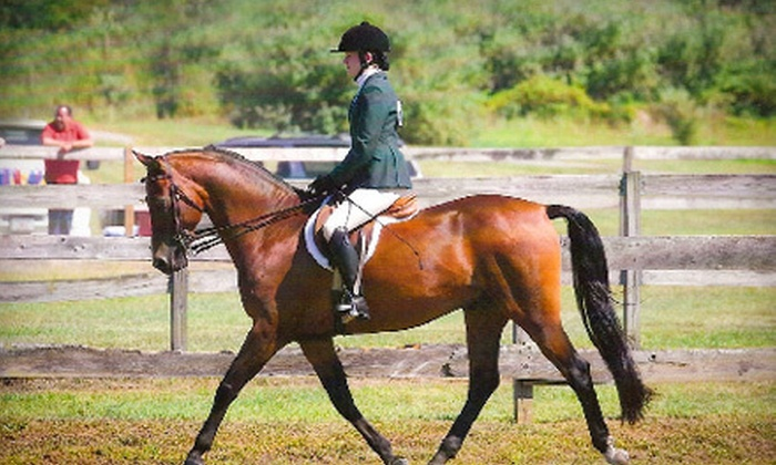 Whispering Oak Farm - Steep Brook: Three or Five Private, 30-Minute Horseback-Riding Lessons at Whispering Oak Farm in Dighton (Up to 54% Off)