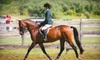 Up to 54% Off Horse-Riding Lessons in Dighton