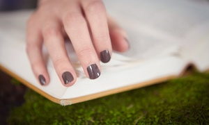 Susan Wray Randall Nails: $37 for a Shellac Manicure and Express Pedicure at Susan Wray Randall Nails ($60 Value)