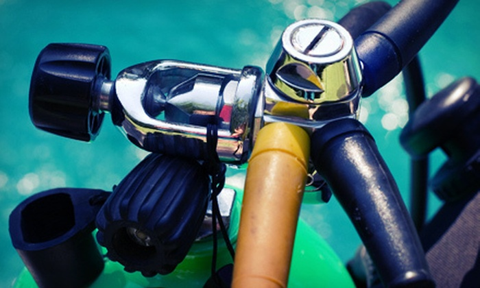 Adventure Diving - Crystal River: Discover Scuba Course, or Two-Day or Advanced Scuba-Certification Course from Adventure Diving (62% Off)