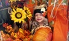 Up to 52% Off Hayride and Pumpkin-Patch Outing