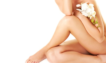 Six Laser Hair-Removal Treatments on a Small, Medium, Large, or Extra-Large Area  (Up to 93% Off)