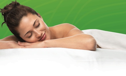 $59 for One 80-Minute Therapeutic Massage Session at Elements Massage Alderwood ($119 Value)