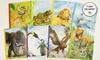 Animal Diaries 8-Book Bundle