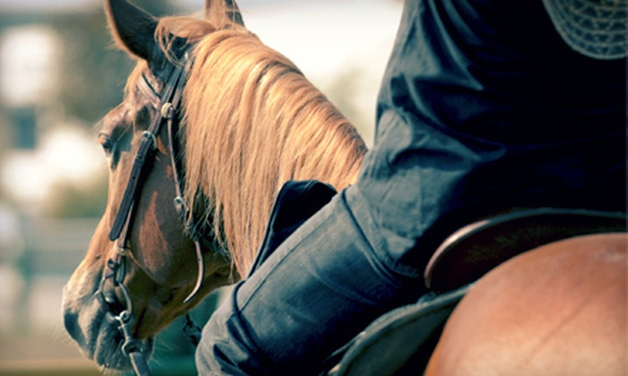 Diamond P Stables - Salisbury: 90-Minute Horseback Trail Ride for Two or Four from Diamond P Stables in Crozier (Up to 55% Off)
