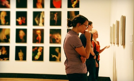 One-Year Membership to Harn Museum of Art (Up to 60% Off). Four Options Available.