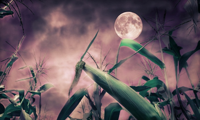 Country Lane Tree Farm - Allen: Haunted Hayride and Indoor Carnevil Barn for Two or Four at Country Lane Tree Farm (Up to 52% Off)
