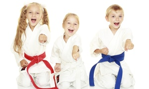 Just For Kicks Black Belt Academy: Up to 80% Off Martial Arts Lessons & Uniform at Just For Kicks Black Belt Academy