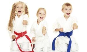 Just For Kicks Black Belt Academy: Up to 84% Off Martial Arts Lessons & Uniform at Just For Kicks Black Belt Academy