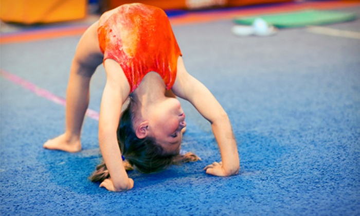 Tiny Tumblers - Rocklin: One Month of Toddler or Children's Tumbling Classes at Tiny Tumblers (56% Off)