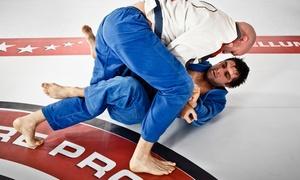 Defensive Arts Dojo: Month of Brazilian Jiu Jitsu or Karate for One or Two at Defensive Arts Dojo (Up to 59% Off)