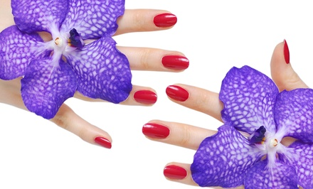 One or Three Shellac Manicures from Jacci at Ara Bella Salon (Up to 53% Off)