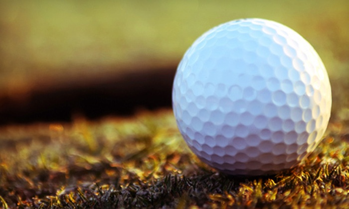 New Rogell Golf Course - Redford: 18 Holes of Golf with Cart Rentals for Two or Four at New Rogell Golf Course (Up to 73% Off)