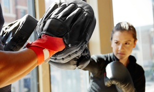 Asian Sun Martial Arts and Fitness: One Month of Unlimited Cardio-Fit Kickboxing Classes or Five Classes at Asian Sun Martial Arts and Fitness (Up to $70 Off)