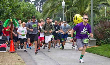 Fun Run, Beer Garden, and Concert for One, Two, or Three from San Jose 4.20 Mile Fun Run (Up to 58% Off)