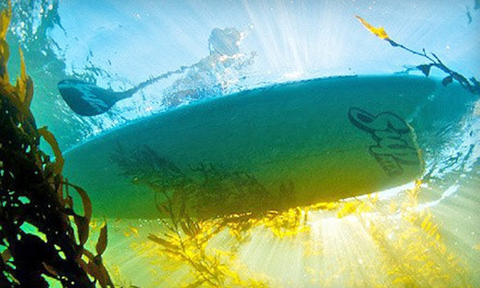 Paddle Away Sports - Boynton Beach: Half-Day Kayak or Paddleboard Rental for One or Two from Paddle Away Sports (Up to 55% Off)