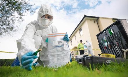Investigazioni digitali forensi a 19,90euro