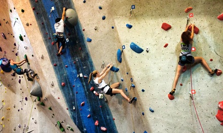 Intro Rock-Climbing Class and One Month of Unlimited Climbs at The Rock Club (Up to 79% Off)