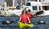 Chula Vista Kayak - J St. Marina boat launching ramp: Two-Hour Tour or Three-Hour Rental in a Single or Tandem Kayak from Chula Vista Kayak (Up to 52% Off)