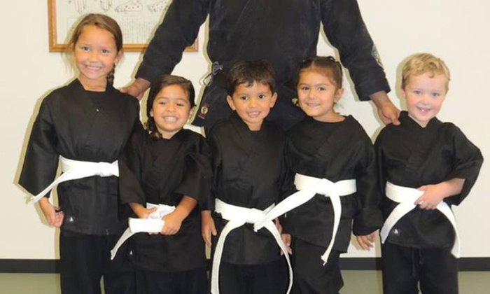 OTK Martial Arts - Bay Shore: Five Karate Classes at Otk Martial Arts (89% Off)