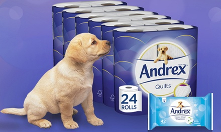 Up to 96 Rolls of Andrex Toilet Paper with up to Three Packs of Andrex Washlets from £9.98