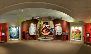 Halle Heart Children's Museum: $11 for Admission for Four to Halle Heart Children's Museum ($20 Value)
