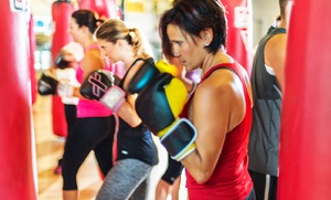Empowering Punch: $11 for Two Weeks of Unlimited Fitness Classes at Empowering Punch ($50 Value)