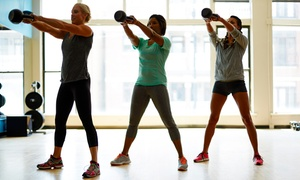 The Elite Fitness & Boot Camp: 3 or 6 Training Sessions or One-Month Unlimited Gym Package at The Elite Fitness & Boot Camp (Up to 74%Off)