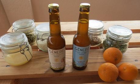 Visita guiada a fábrica de cerveza Gènesis para 1, 2 o 4 con cata ilimitada y almuerzo desde 8,90 € en L'Albufera