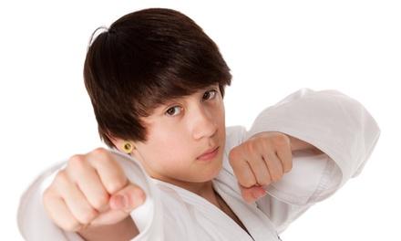 Up to 81% Off Jiu-Jitsu,Kickboxing & TKD at Kou's Taekwon-Do School