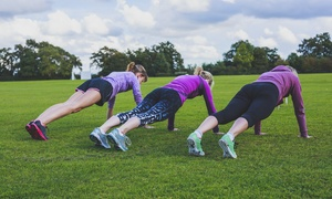 Superb Fitness: Seven Group Boot Camp Sessions for One with Superb Fitness