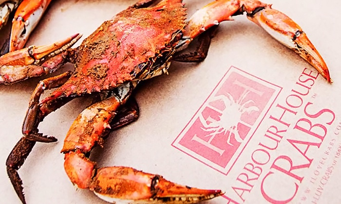 Harbour House Crabs: $25 for $50 or $40 for $80 Worth of Maryland Blue Crabs, Shrimp, and Premium Seafood from Harbour House Crabs