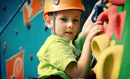 Fun-Center Outing with Jungle-Gym Play and Rock Climbing for Two, Four, or Six K...