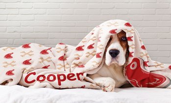Up to 91% Off Custom Dog Blankets from Printerpix USA