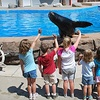 45% Off Kids' Sea Lion Training Program
