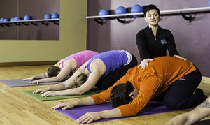 Up to 63% Off Classes at Barre Bliss at Barre Bliss, plus 6.0% Cash Back from Ebates.