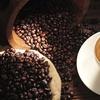 250 gram koffiebonen