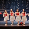 Ballet Concerto – Up to 45% Off Holiday Special