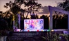 Naples Botanical Garden - East Naples: Daytime Visit and Night Lights in the Garden Event for Two or Four at Naples Botanical Garden (Up to 53% Off)