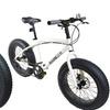 Mammoth Fat-Tire Bikes