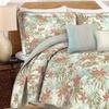Caribbean Joe 100% Cotton Comforter Set (5- or 6-Piece)
