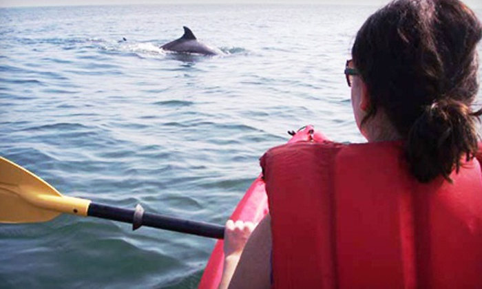 Ocean Eagle Kayak Adventures - Northeast Virginia Beach: $45 for Dolphin and Nature Kayaking for Two from Ocean Eagle Kayak Adventures ($90 Value)