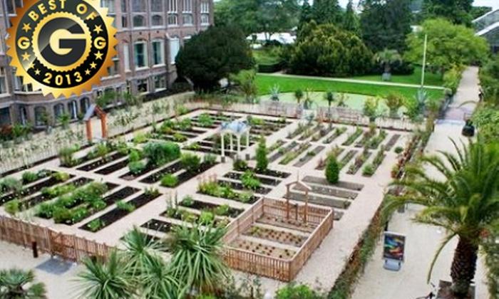 Botanische Tuin Leiden : Hortus botanicus leiden tickets in leiden groupon