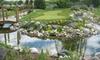 Mini Golf Gardens - Ottawa: 36-Hole Round of Mini Golf for Two or Four at Mini Golf Gardens (Up to 53% Off)