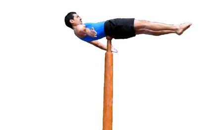 A Gymnastics Class at Mallakhamb Federation USA (75% Off)