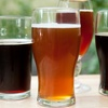 50% Off Craft Beer Tasting